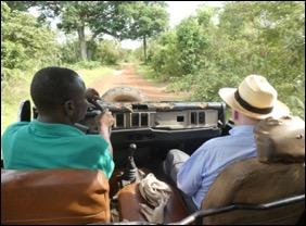 drivingsafari